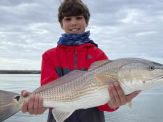 Redfish bite is setting Charleston waters on fire