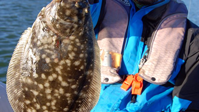 The Fall Flounder Run Around Murrells Inlet And Charleston Is Often Spot On