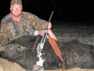 hog control in the Carolinas