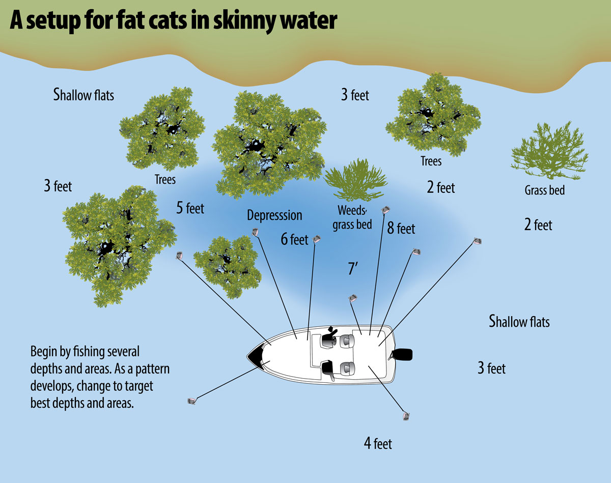 Spring cats are a shallow-water phenomena on the Santee Cooper lakes