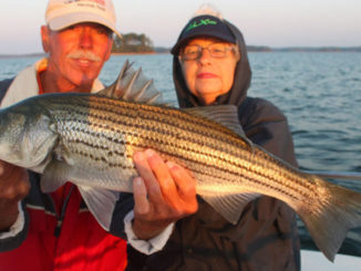 Striper fishing is simple on Clarks Hill Lake in February
