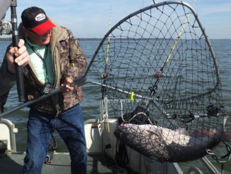 drift-fishing