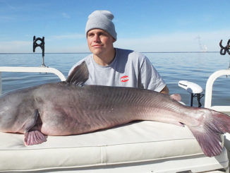 Guide Bobby Winters caught this big winter blue catfish from Lake Marion.