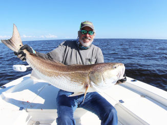 Popular guide Rod Thomas will present seminars in January at a fishing show in Raleigh, N.C., that cover big catching huge red drum like this one.