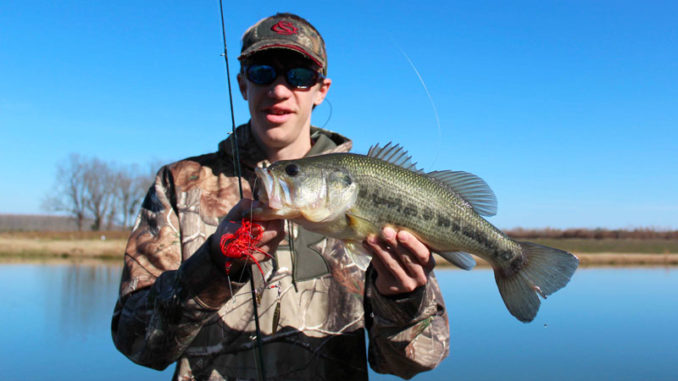 Big spinnerbaits are great tools for catching February bass on South Carolina's Cooper River.
