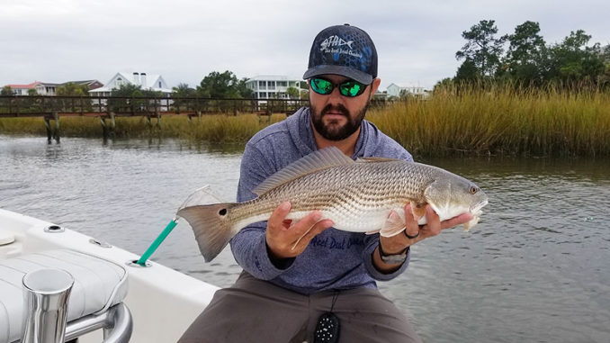 Guide Shane Flannigan of Charleston, S.C., can usually catch several fish out of a winter school of reds before they spook.