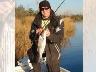 Guide Stu Calder shows off a Cape Fear River striped bass.