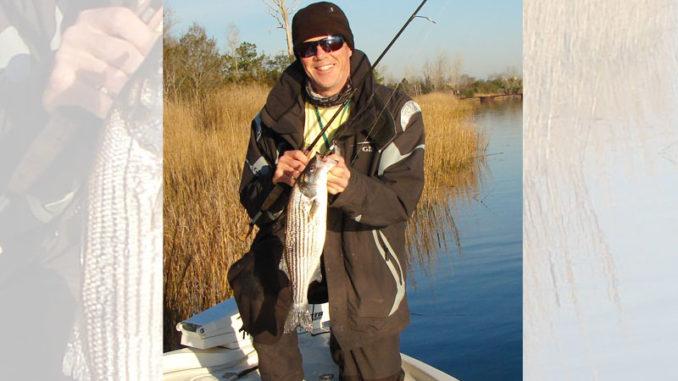 Guide Stu Calder shows off a Cape Fear River striped bass.