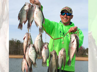 Guide Steve Pietrykowski catches Lake Hartwell crappie in March by being ready to change tactics and where he fishes.
