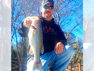 Chris Brown catches plenty of nice High Rock Lake bass in extremely shallow water in April.