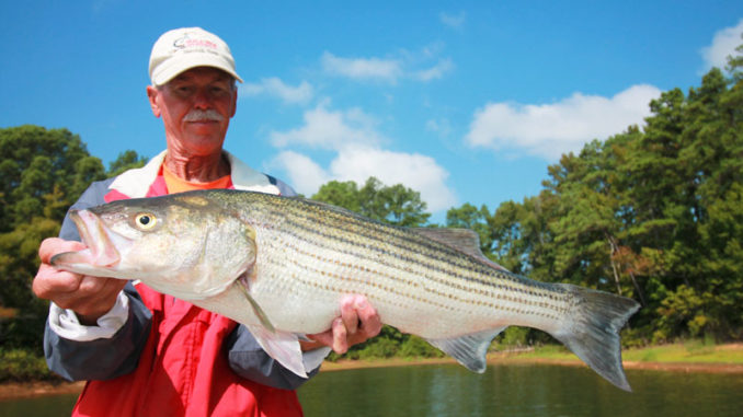 Guide Tommy Dudley said big stripers are a good possibility at Clarks Hill Lake in April, especially close to the dam on the lower end.
