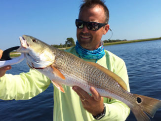 Spot-tail bass, aka redfish, hit the spring hungry after a winter in the ocean, and they move into Georgetown's estuaries in April with a big appetite.