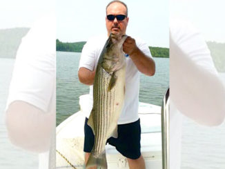 May is big-fish time for Lake Rhodhiss stripers