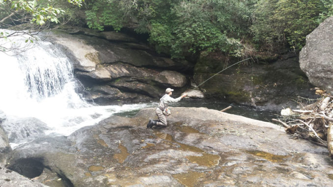 Many mountain trout streams in the Carolinas offer not only the opportunity to catch beautiful trout, but they're set in some of the most-beautiful scenery.