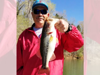 Guide Andy Fox said that bass fishing really cranks up on Lake Hickory in June.