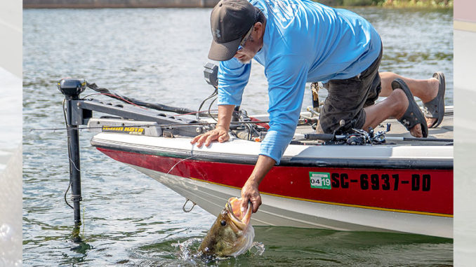 Don't be afraid to leave shallow water this month. Big bass like this one being released are mostly in deeper water.