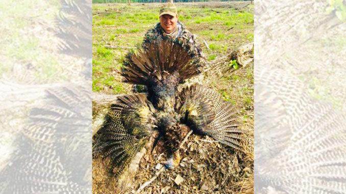 Turkey Harvest