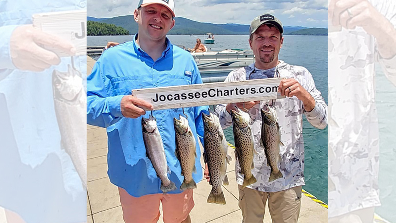 Jocassee trout
