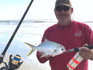 Multiple species are biting in the Carolina surf