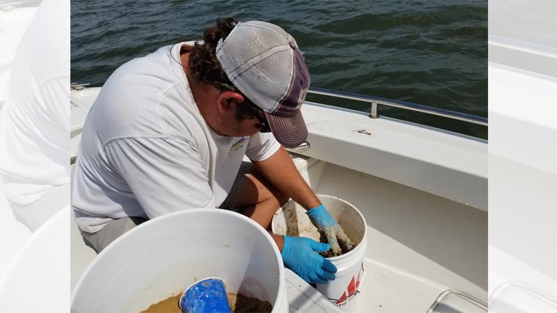 2019 shrimp baiting season opens today at noon - Carolina
