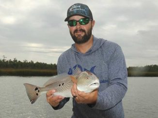 Get crabby with Wando River redfish