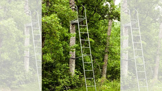 tree stand