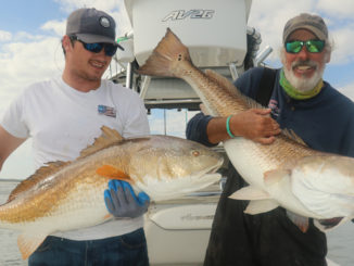 Winyah Bay Bull Redfish