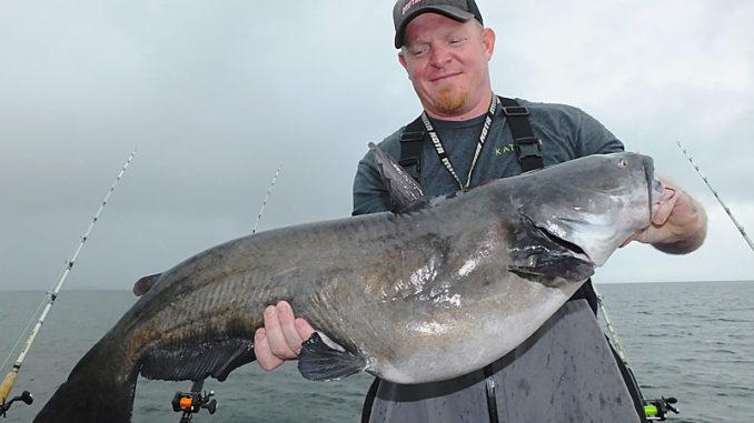 Santee Cooper's catfish