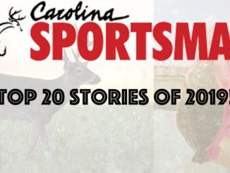 top 20 stories
