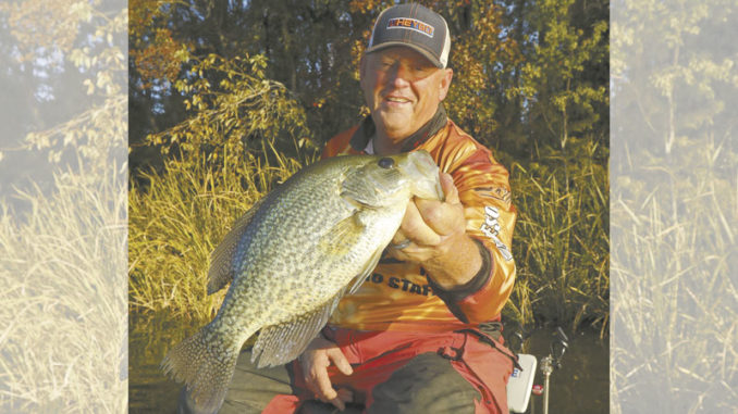 cold-water crappie