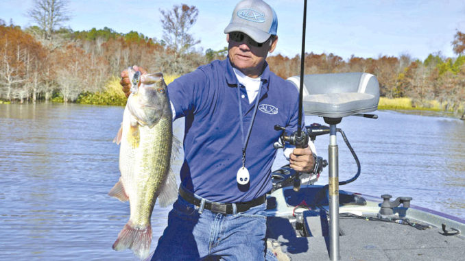 February bass