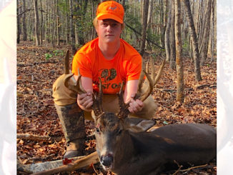 17-point buck