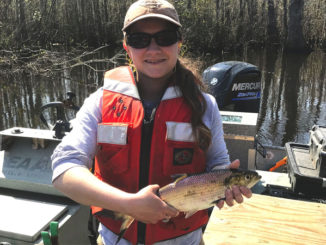 coastal rivers fishing report