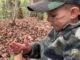 pretend turkey hunt