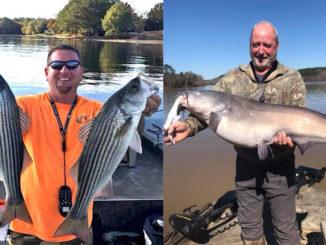 Lake Wateree catfish and stripers