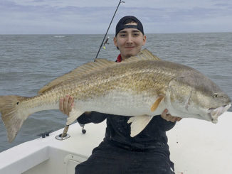 Hatteras redfish