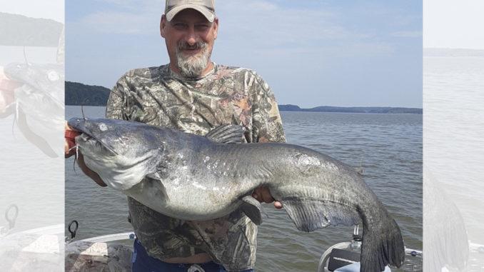 Kerr Lake catfish