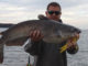 myth about catfish baits