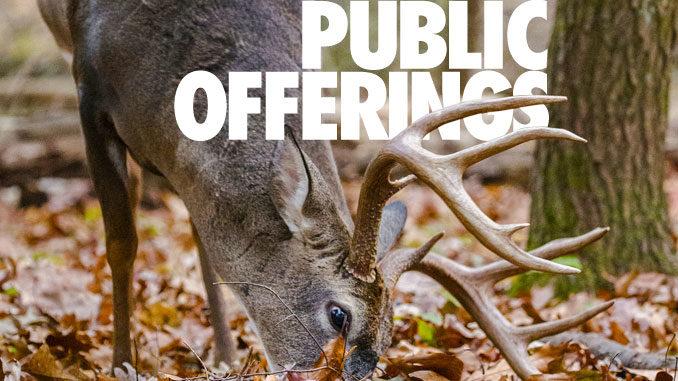 public offerings