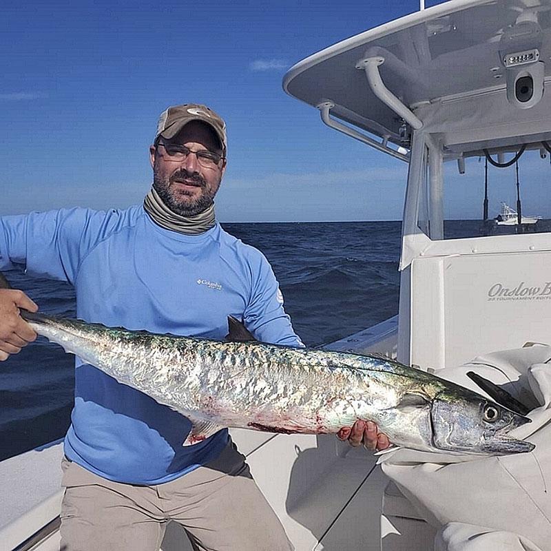 king mackerel