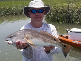 Harbor River redfish