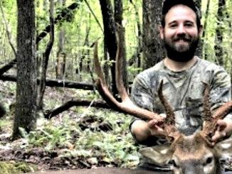 8-point buck