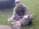 11-point buck