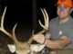 Alamance County buck