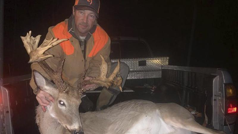 31-point buck