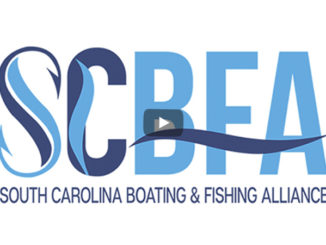 boating and fishing alliance