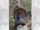 25-pound gobbler