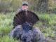 20-pound gobbler