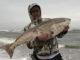 50-inch redfish