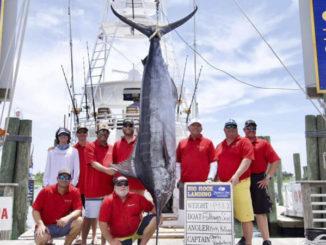 Big Rock Blue Marlin Tournament